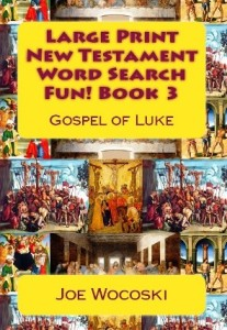 Bible Word Search Fun Book 3 by Wocoski
